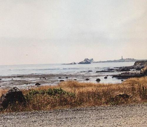 CalifornienTexas1995-45 DM9EEde