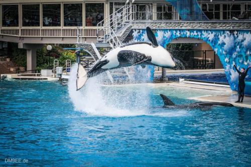2007-USA-03-SeaWorld