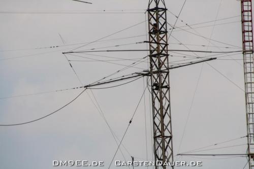 DM9EE IMG 0664