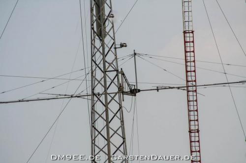 DM9EE IMG 0665